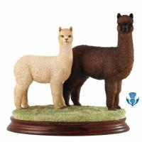B1452A B.F.A. CLASSIC LTD. Hembra & Cria Brown