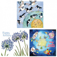 <span>Shop for Emma Ball greetings cards, small cards, large cards from original watercolours.</span>