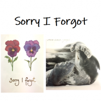 Shop for Sorry, Sorry I Forgot & Belated Birthday cards at Morrab Studio