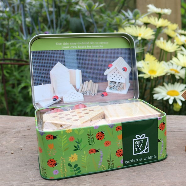 Apples To Pears Make Your Own Insect House 101219