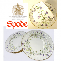 Beautifully observed and subtly varied studies of the harebell, with its slender stems and graceful flowers, create this delicate and sensitive design in fine bone china.<br /><br /><br />Remaining items of original stock from (Spode) supplier.